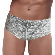 Gaff - Panty mit edlem Silber-Schimmer